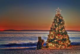 Тур «Рождество в Абхазии»